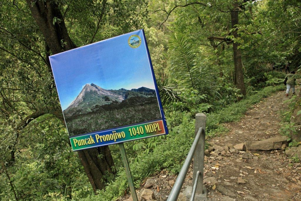 Jalur ke Puncak Pronojiwo