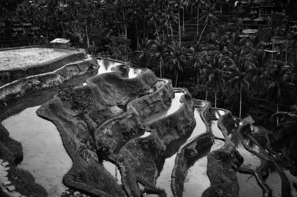 Desa Tegallalang Bali