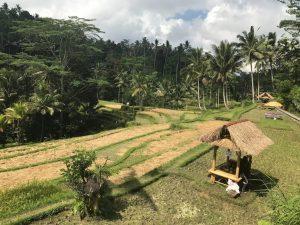 Desa-desa Gianyar-Bangli sebagai Tujuan Wisata di Bali