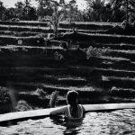 Ubud Bali philipp meiners unsplash