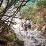 8 destinasi wisata trekking shutterstock