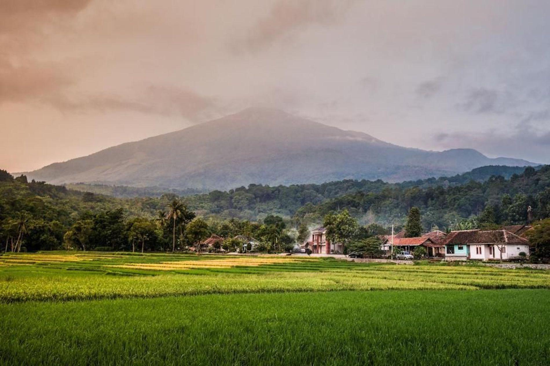 244 desa wisata bisa menjadi lokomotif perkembangan perekonomian Indonesia.
