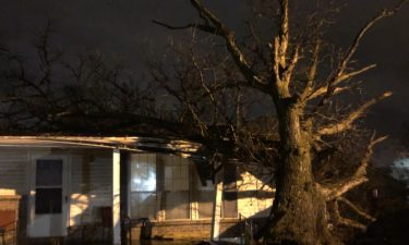Tree falls into house in northeast Columbia.
