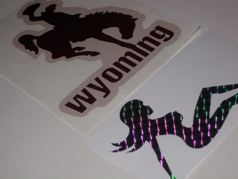 Hetfield Replica ESP Explorer Mudflap & Wyoming Stickers / Decals