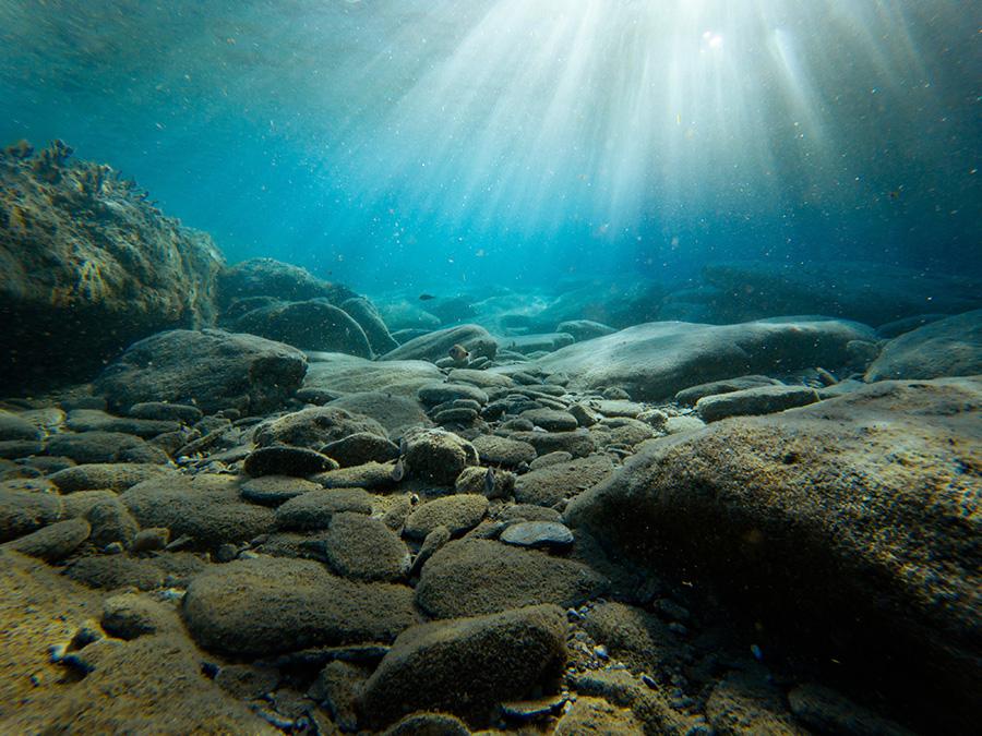 underwater photography 001