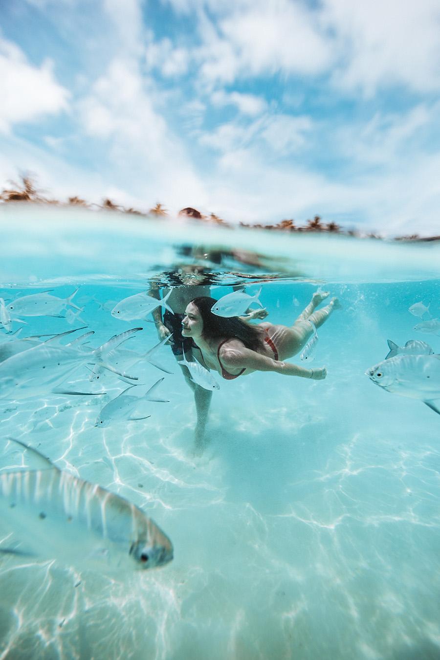 underwater photography 002