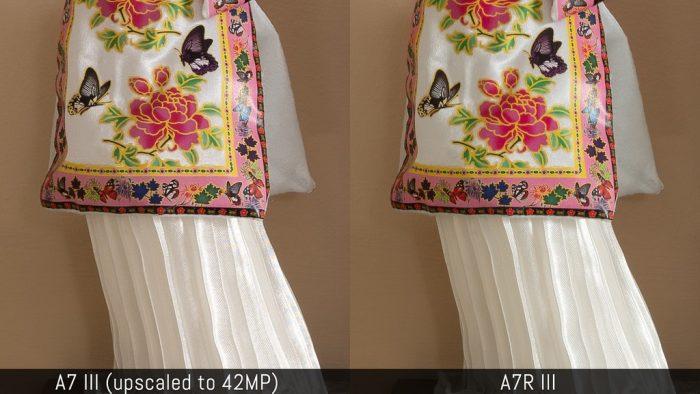 Sony a7 III vs. a7r III - Image Quality