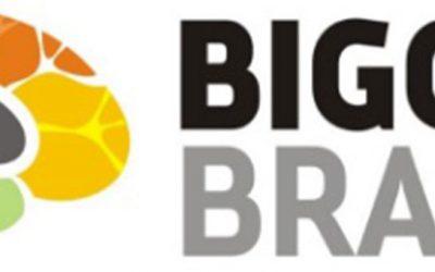 Ideal Tech Offering Bigger Brains Online Training