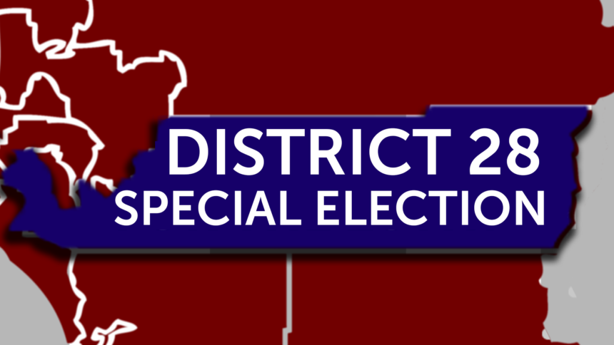 11-15-DISTRICT-28-SPECIAL ELECTION