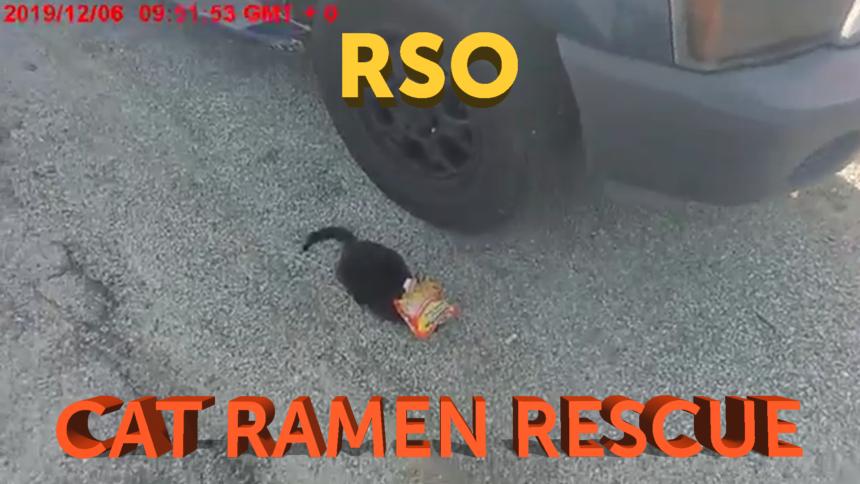 12-6-CAT-RAMEN-RESCUE