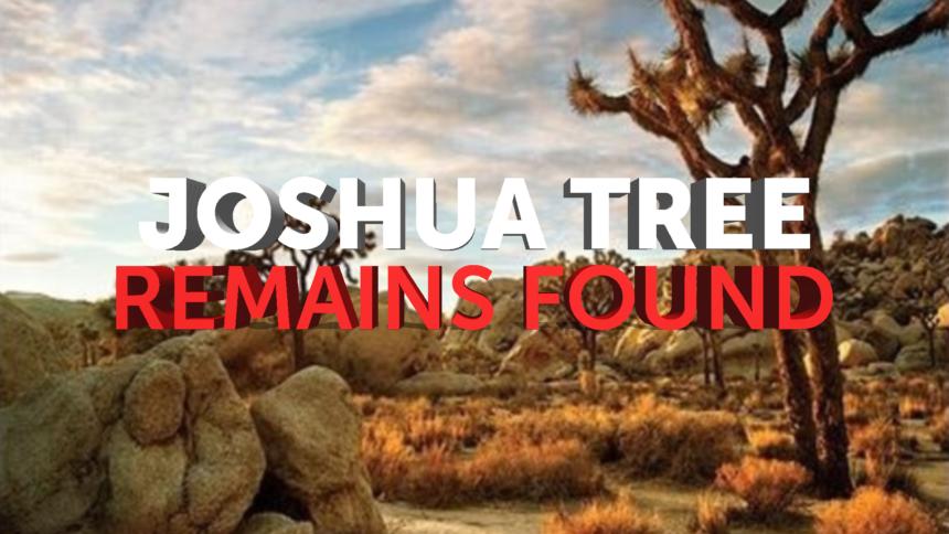 1-20-JOSHUA-TREE-REMAINS-FOUND-GFX