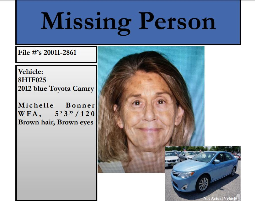 missing woman 2