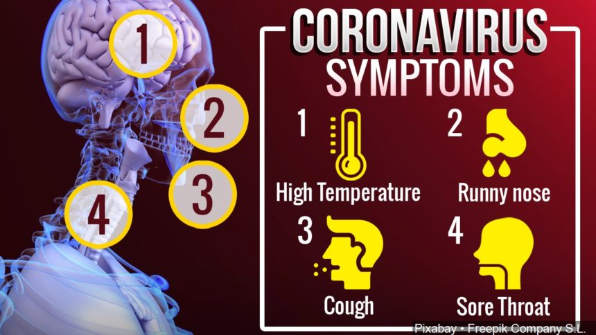 symptoms of corona virus - photo #37
