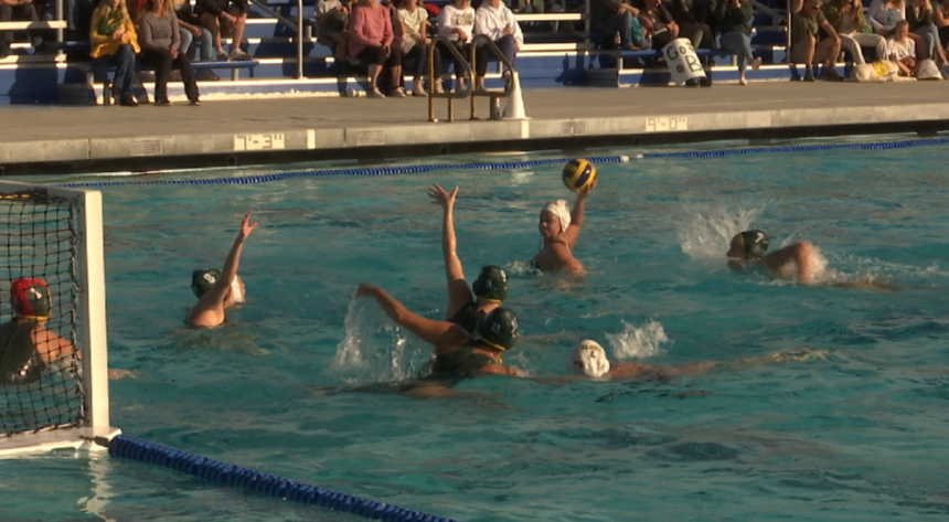 SB Dons girls water polo loses