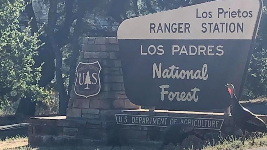 los padres national forest sign