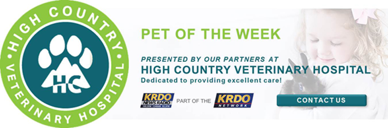 Pet of the Week Presented by High Country Veterinary Hospital