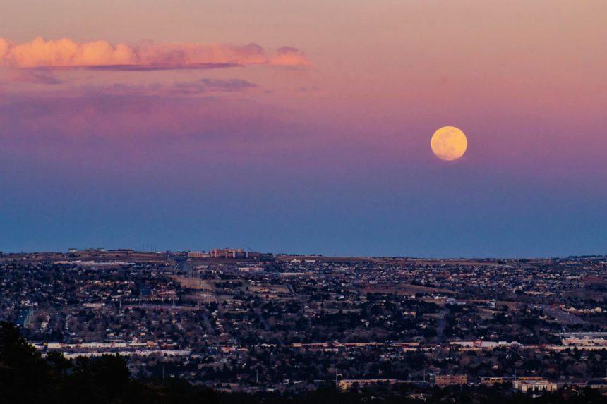 Landon Harris pink moon