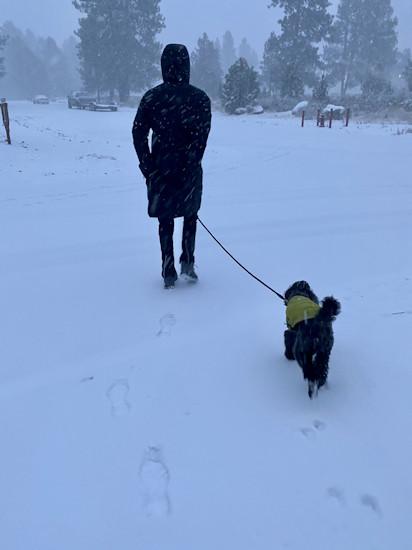 Dog walking Sisters snow Richard Sandness 1126