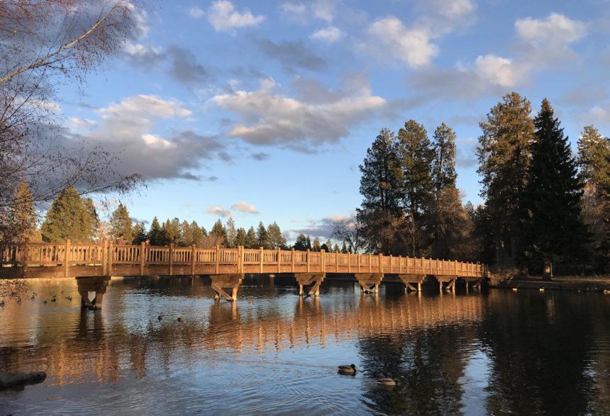 Drake Park footbridge Jen Layton 1223