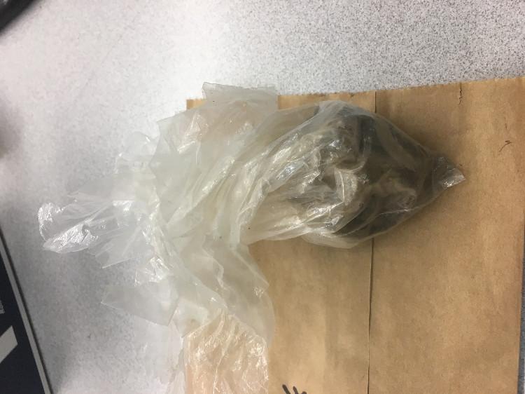 Redmond drug bust heroin