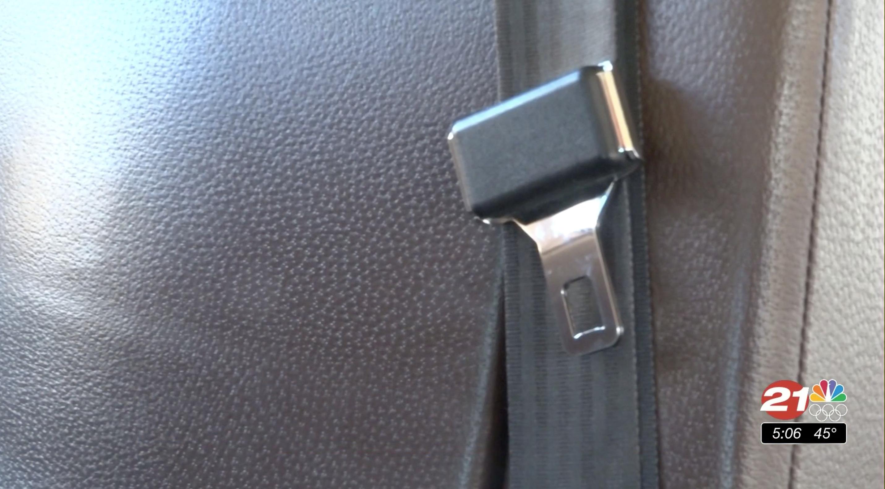 seatbelts on school buses