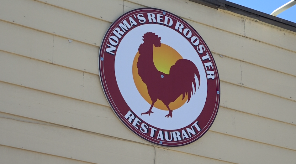normas red rooster