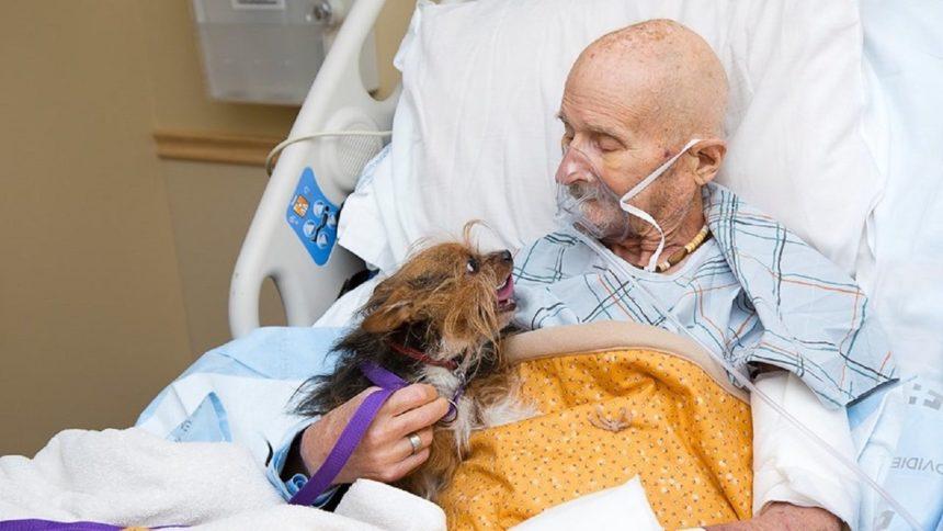 Vietnam veteran with dog