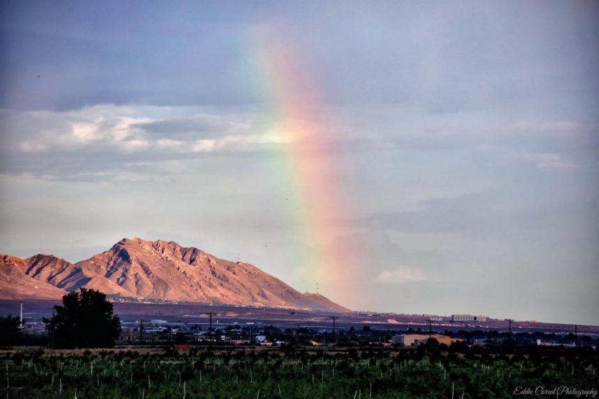 Eddie Corral Organ Rainbow