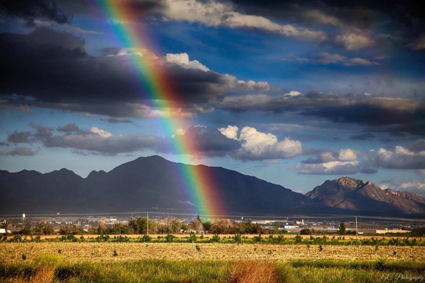 Eddie Corral Rainbow