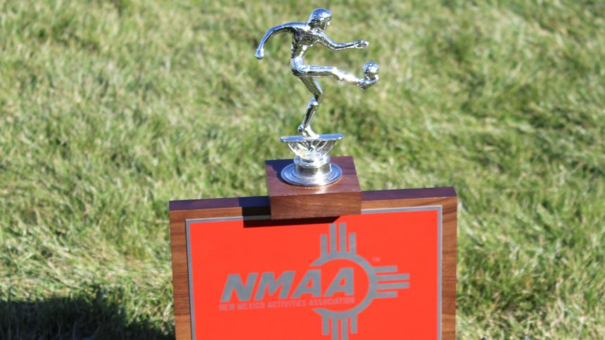 lady-hawks trophy