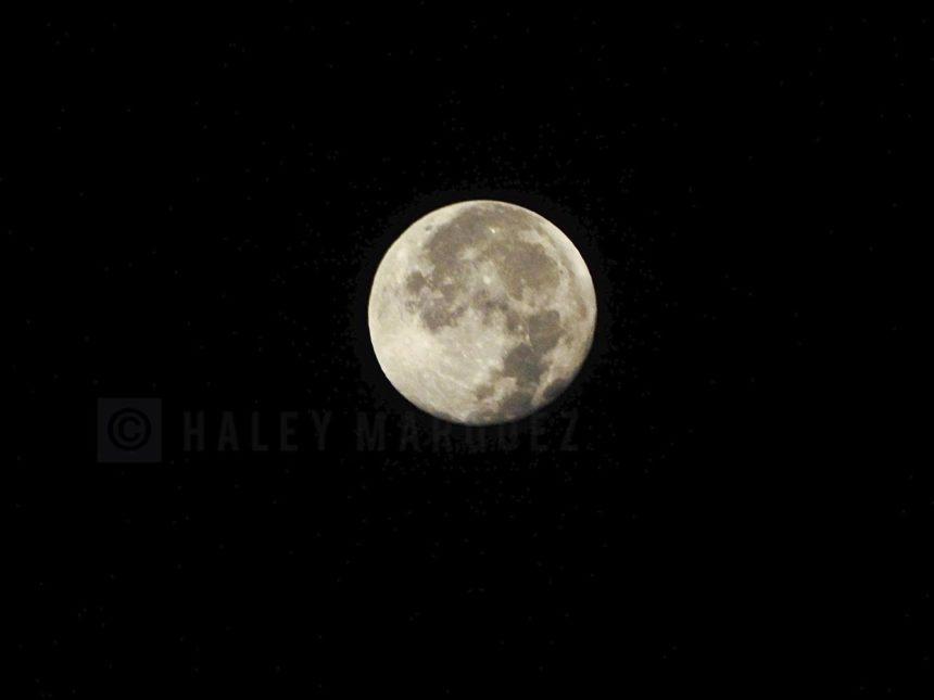 Last Moon of The Decade 121319