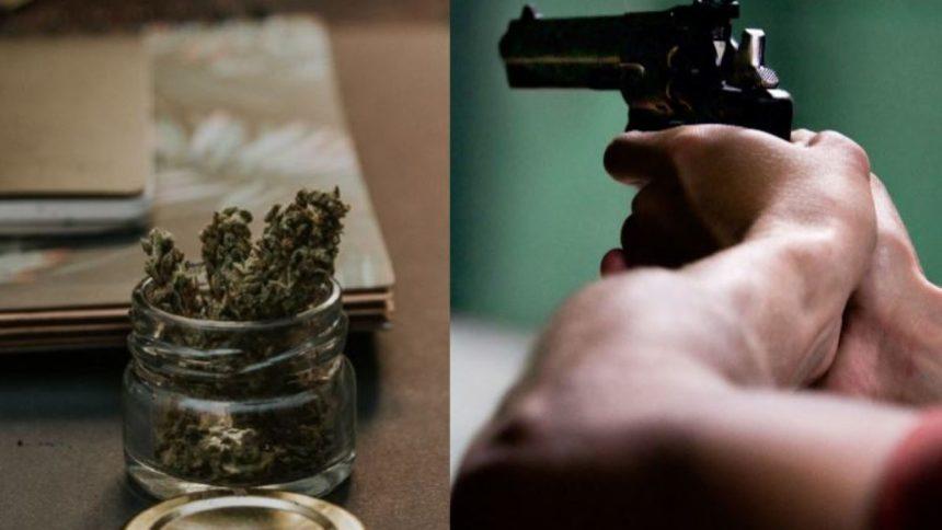 marijuana-gun