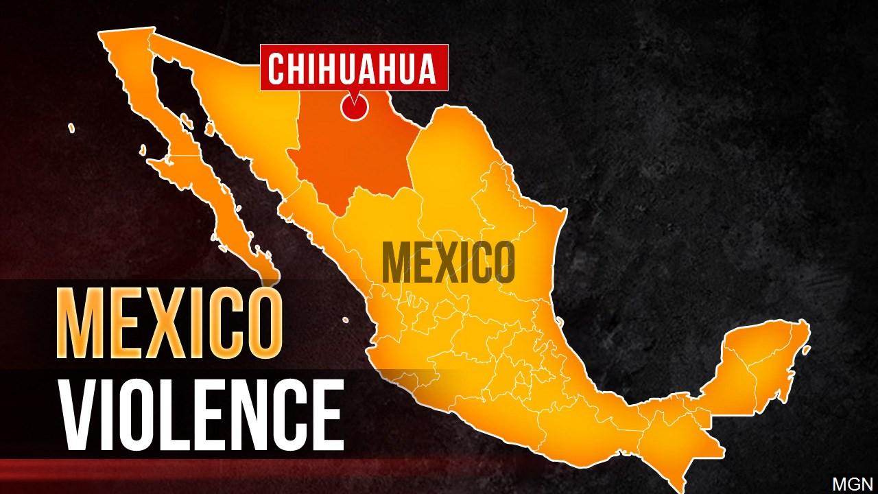 chihuahua violence