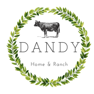 dandy_36cd4327-2cd4-4fe6-a64d-a217c814140a_300x