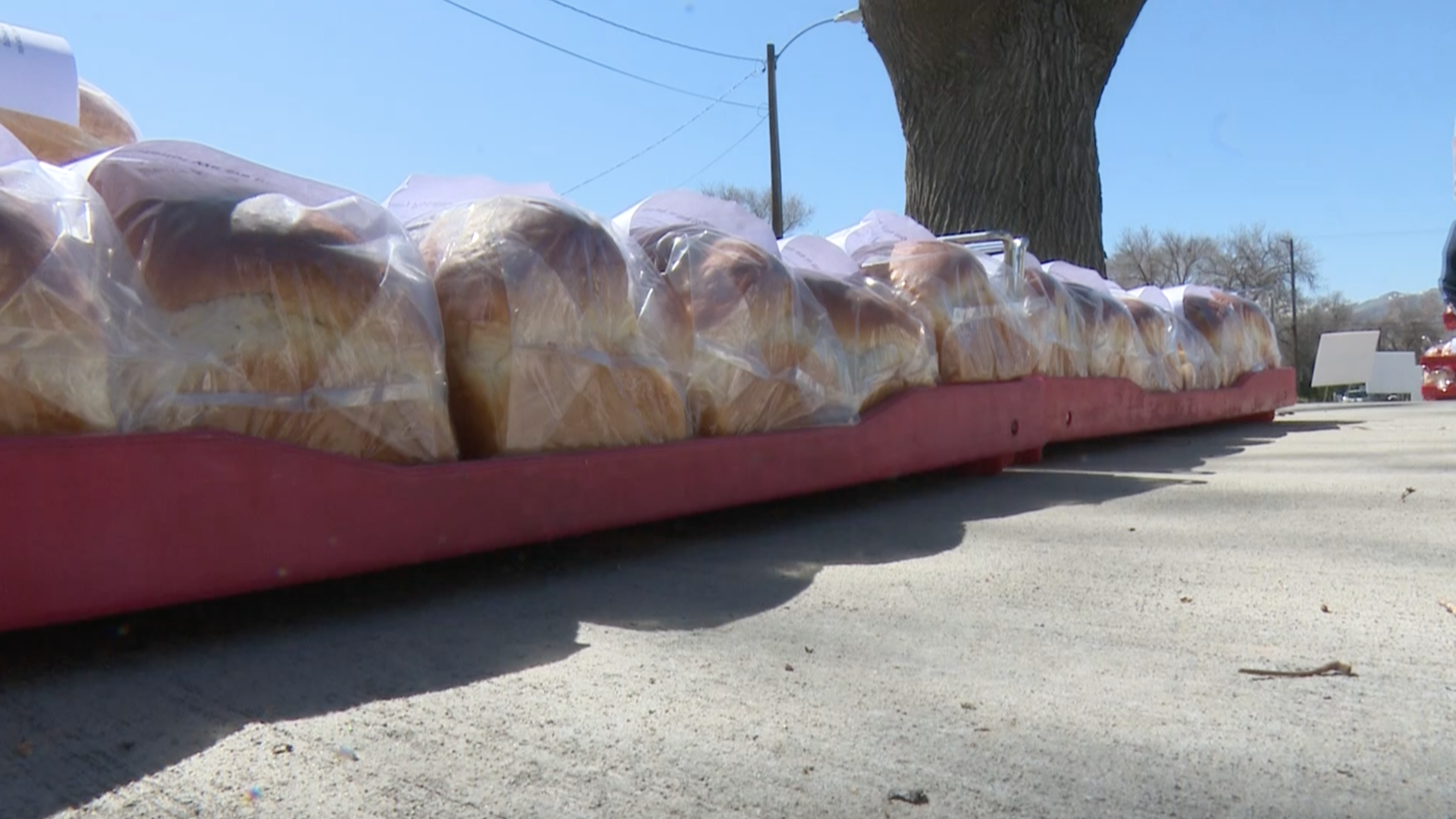 Local business distributes 1,200 loaves of bread