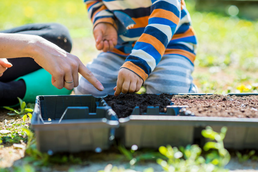 Small boy helping his mother do the planting