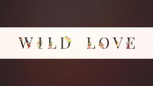Wild Love Sermon Banner